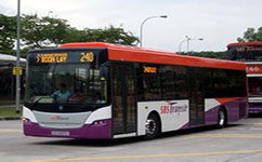 上海芦杜专线公交车路线