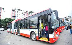 鹤岗3路公交车路线