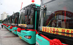 上海南园1路公交车路线